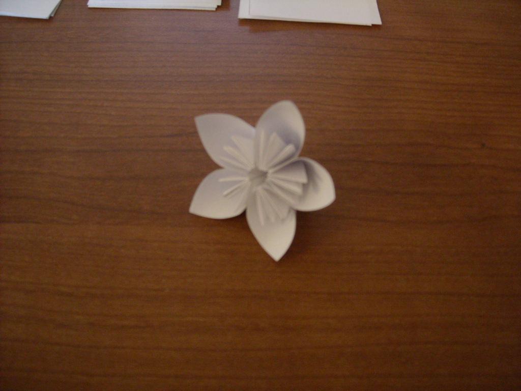 Как сделать белые цветы из бумаги акция